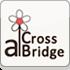由緒正しき場所で、結婚式という儀式を本格的にプロデュース アイ・クロス ブリッジ